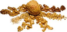 AF Nuts